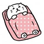 【猫 飼育 豆知識】ねこの睡眠時間が長すぎる?どんだけ寝るの!?