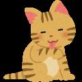 【猫 飼育 豆知識】換毛期の抜け毛対策!放っておくと、とっても危険?!
